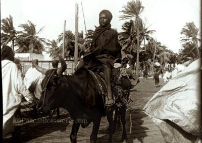 Senegamb-milit-1898-sen-stl-boeuf
